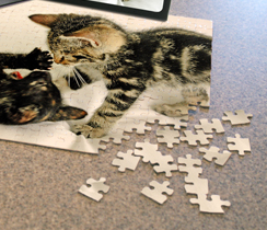 Order Puzzles